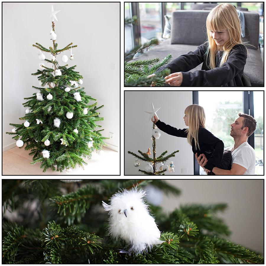 christmas_tree_2014