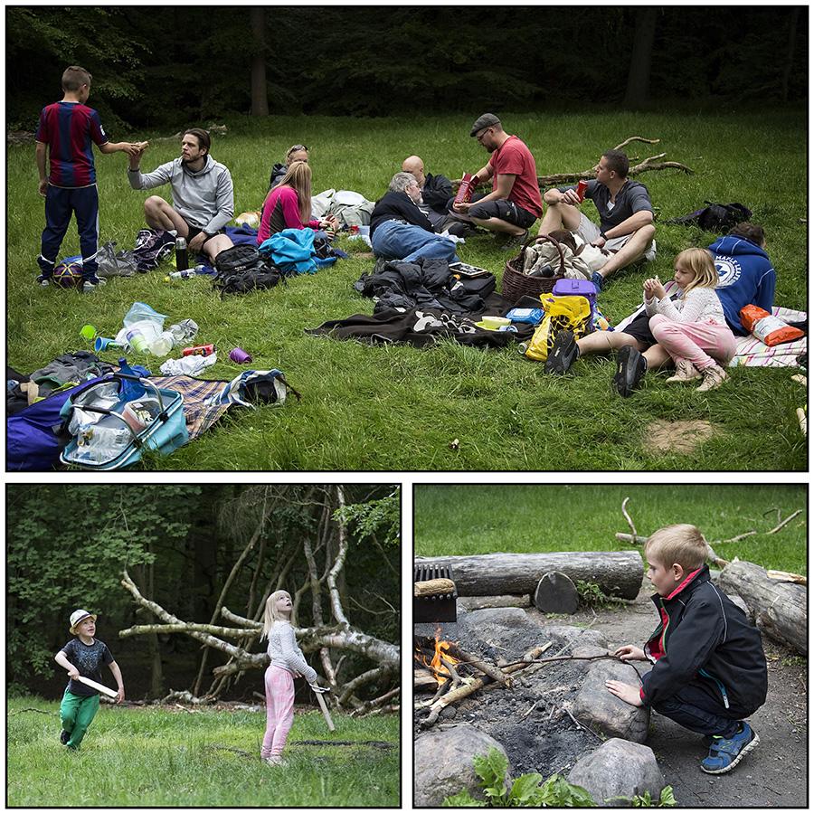 family_picnic_june_2015-003-(Side-3)